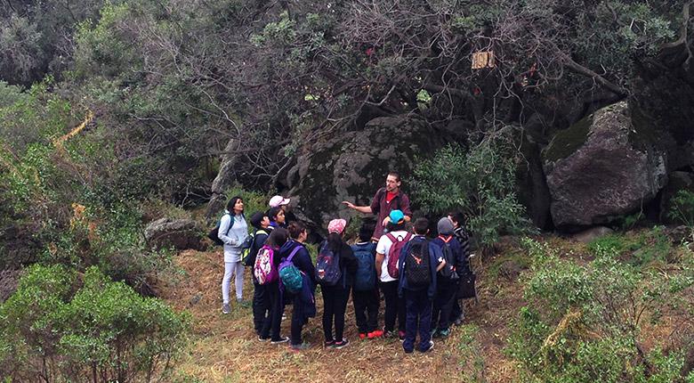 Centro de educación ambiental Parque Mahuida (CEA)
