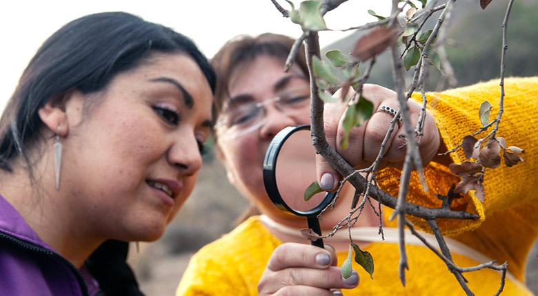 Profesores visitan el Parque Mahuida en Seminario de Cambio Climático (4 de junio 2019)