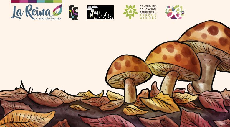 """Chocolate Científico: """"Reino Fungi ¡una exploración sin límites!"""" – Lunes 22 de julio – 16:30 horas."""